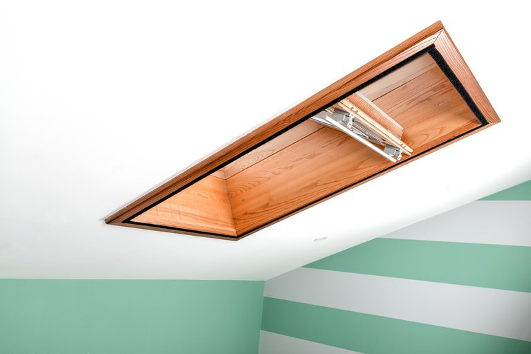 Wood trimmed Skylight hobart